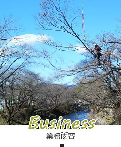 BUSINESS 業務内容